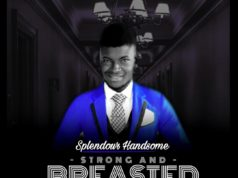 download Splendour Handsome – Strong And Breasted One