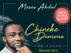 Chineke Dimma By Moses Abdul